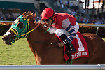 Jockey Jose Lezcano and Parranda (RG on blinkers) leading the field on her way to winning the Florida Sunshine Millions Filly and Mare Turf at Gulfstream Park, Hallandale Beach Florida. 01-18-2014