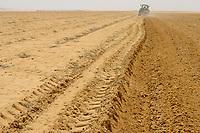 EGYPT, Farafra, potato farming in the desert, ploughing of field with tractor, irrigation by fossile groundwater from the Nubian Sandstone Aquifer which is pumped from 1000 metres deep wells  / AEGYPTEN, Farafra, United Farms, Kartoffelanbau in der Wueste, Pfluegen eines Feldes, die kreisrunden Felder werden mit Pivot Kreisbewaesserungsanlagen mit fossilem Grundwasser des Nubischer Sandstein-Aquifer aus 1000 Meter tiefen Brunnen bewaessert