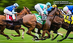 ELMONT, NY - OCTOBER 08: Lady Eli #5, ridden by Irad Ortiz Jr., during the 39th Running of The Flower Bowl, on Jockey Club Gold Cup Day at Belmont Park on October 8, 2016 in Elmont, New York. (Photo by Douglas DeFelice/Eclipse Sportswire/Getty Images)