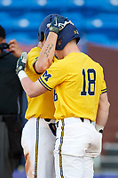 Michigan Wolverines designated hitter Dominic Clementi (13) talks with Jack Blomgren (18) after scoring a run during a game against Army West Point on February 17, 2018 at Tradition Field in St. Lucie, Florida.  Army defeated Michigan 4-3.  (Mike Janes/Four Seam Images)