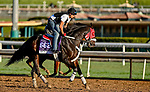 October 30, 2019: Breeders' Cup Dirt Mile entrant Spun to Run, trained by Juan Carlos Guerrero, exercises in preparation for the Breeders' Cup World Championships at Santa Anita Park in Arcadia, California on October 30, 2019. Scott Serio/Eclipse Sportswire/Breeders' Cup/CSM