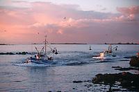 Europe/France/Bretagne/29/Finistère/Saint Guénolé: Retour des sardiniers au port à l'aube