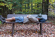 Man on bench along the Discovery Trail in the White Mountain National Forest of New Hampshire USA during the autumn months. This trail is a living classroom in ecological management.