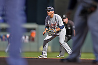 29 September 2012: Detroit Tigers infielder Omar Infante in action against the Minnesota Twins at Target Field in Minneapolis, MN. The Tigers defeated the Twins 6-4 in the second game of their 3-game series. Mandatory Credit: Ed Wolfstein Photo