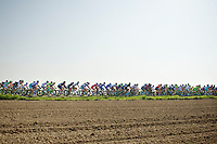 easygoing peloton<br /> <br /> Amstel Gold Race 2014