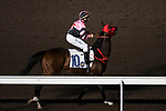 #10 Brett Prebble warming up his horse for the race number 5 at Sha Tin racecourse on November 1, 2017 in Hong Kong, China. Photo by Marcio Machado / Power Sport Images