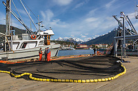 Commercial fishermen check net for needed repairs on dock in Sitka, Alaska.