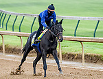 April 25, 2021: Medina Spirit, trained by trainer Bob Baffert, exercises in preparation for the Kentucky Derby at Churchil Downs on April 25, 2021 in Louisville, Kentucky. John Voorhees/Eclipse Sportswire/CSM
