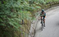 Vasil Kiryienka (BLR/SKY) up the Passo Del Mortirolo (1854m) on stage 16: Pinzolo - Aprica (174km) of the 2015 Giro d'Italia