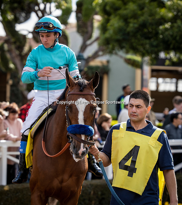 MAR 07: Authentic with Drayden Van Dyke before the San Felipe Stakes at Santa Anita Park in Arcadia, California on March 7, 2020. Evers/Eclipse Sportswire/CSM