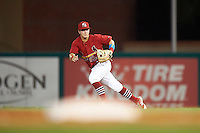 Palm Beach Cardinals second baseman Dylan Tice (8) fields a ground ball during a game against the Jupiter Hammerheads  on August 12, 2016 at Roger Dean Stadium in Jupiter, Florida.  Jupiter defeated Palm Beach 9-0.  (Mike Janes/Four Seam Images)