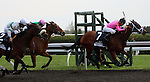 April 18, 2014 Sisterly Love wins the G3 Doubledogdare Stakes at Keeneland over Moment in Dixie (number 2) and Emollient (hidden behind Moment In Dixie)
