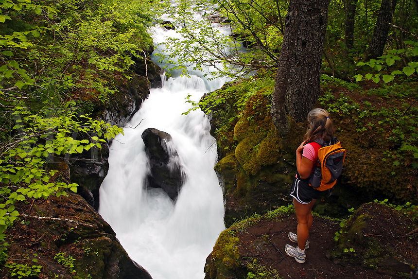 A hiker views the Winner Creek Gorge, Winner Creek Gorge Trail, Girdwood, Chugach National Forest, Alaska.