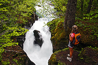 A hiker views the Winner Creek Gorge, Winner Creek Gorge Trail, Girdwood, Chugach National Forest, Alaska.