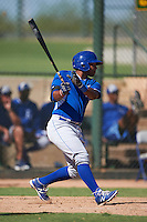 Kansas City Royals Meibrys Viloria (19) during an instructional league game against the San Francisco Giants on October 23, 2015 at the Papago Baseball Facility in Phoenix, Arizona.  (Mike Janes/Four Seam Images)