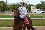 NEW ORLEANS, LA - FEBRUARY 20:<br /> Majestic Harbor #1, ridden by Corey J Lanerie wins the Mineshaft Handicap Stakes in the Louisiana Derby Preview Race Day at Fairgrounds Race Course on February 20,2016 in New Orleans, Louisiana. (Photo by Steve Dalmado/Eclipse Sportswire/Getty Images)