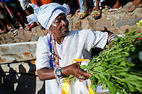 A Baiana woman holds medicinal herbs during the ritual ceremony in honor to Yemanjá, the Candomblé goddess of the sea, in Cachoeira, Bahia, Brazil, 5 February 2012. Yemanjá, originally from the ancient Yoruba mythology, is one of the most popular ?orixás?, the deities from the Afro-Brazilian religion of Candomblé. Every year on February 5th, hundreds of Yemanjá devotees participate in a colorful celebration in her honor. Faithful, usually dressed in the traditional white, gather on the banks of Paraguaçu river to leave offerings for their goddess. Gifts for Yemanjá include flowers, perfumes or jewelry. Dancing in the circle and singing ancestral Yoruba prayers, sometimes the followers enter into a trance and become possessed by the spirits. Although Yemanjá is widely worshipped throughout Latin America, including south of Brazil, Uruguay, Cuba or Haiti, the most popular cult is maintained in Bahia, Brazil.