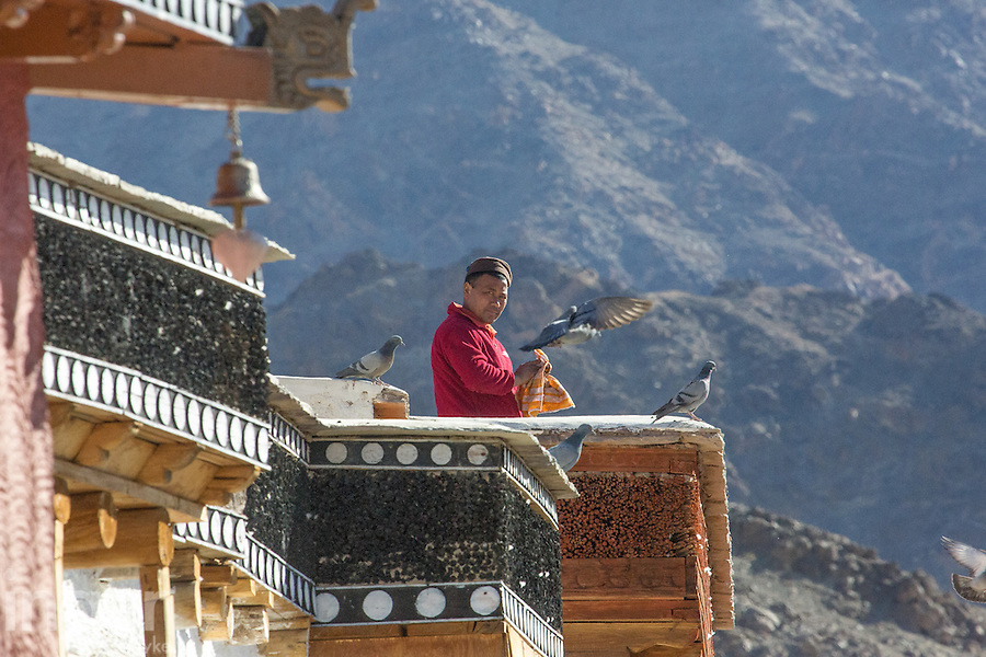 Monk doing dishes at Thiksey Monastery near Leh, Ladakh