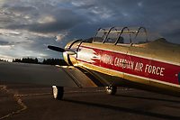 Red and Gold A T-6 Harvard Fighter Airplane, Royal Canadian Air Force, Arlington Fly-In 2016, Washington State, USA.