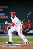 Harrisburg Senators first baseman Shawn Pleffner (17) at bat during a game against the New Hampshire Fisher Cats on June 2, 2016 at FNB Field in Harrisburg, Pennsylvania.  New Hampshire defeated Harrisburg 2-1.  (Mike Janes/Four Seam Images)