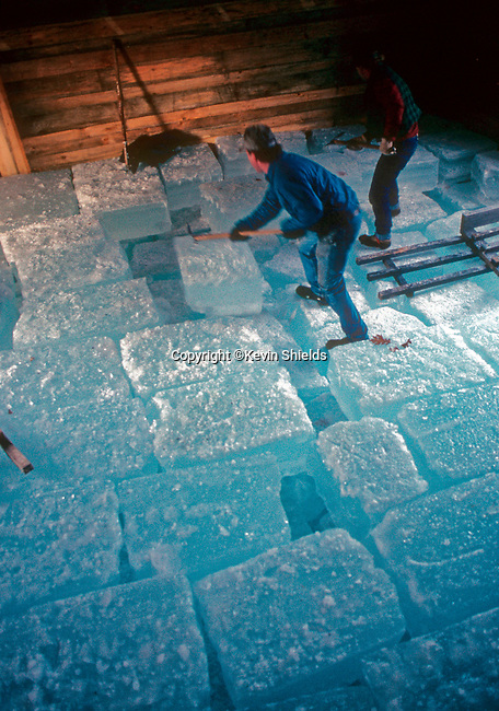 Annual ice harvest at the Thompson Ice House in Bristol, Maine, USA