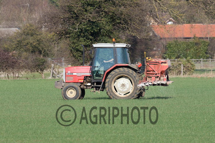 Applying Nitrogen to Winter Wheat near Ryhall,Rutland.Picture by Tim Scrivener date taken 1st March 2012.mobile 07850 303986 e-mail tim@agriphoto.com.....covering agriculture in The United Kingdom....
