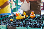 Local blueberries at the Farmer's Market, Saturday, Sept. 3, 2011 in Ann Arbor, Mich. (Tony Ding for The New York Times)
