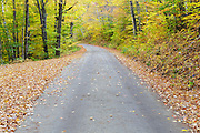 Autumn foliage along the Sawyer River Road in Livermore, New Hampshire USA during the autumn season. Parts of this road follow the Sawyer River Road (1877-1928), which was a logging railroad owned by the Saunders family.