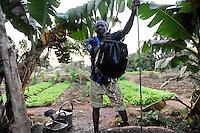 BURKINA FASO Kaya, Bank der Dioezese Kaya vergibt Mikrokredite fuer Kleinunternehmer zur Einkommensfoerderung, Kartoffel- und Gemuese Anbau von EMILE OUEDRAOGO /<br /> BURKINA FASO Kaya, diocese bank gives micro loan for income generation
