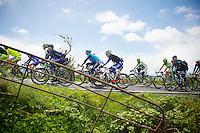 peloton<br /> <br /> Giro d'Italia 2014<br /> stage 3: Armagh - Dublin 187km