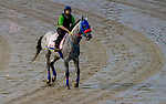 September 2, 2020: Dream Marie exercises as horses prepare for the 2020 Kentucky Derby and Kentucky Oaks at Churchill Downs in Louisville, Kentucky. The race is being run without fans due to the coronavirus pandemic that has gripped the world and nation for much of the year. Scott Serio/Eclipse Sportswire/CSM