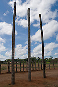 Xingu Indigenous Park, Mato Grosso State, Brazil. Aldeia Yawalapiti. Oca house under construction; first stage with main columns and wall stakes in place.