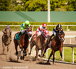 HALLANDALE BEACH, FL - December 02: Mended #6, with Ricardo Gonzalez aboard, rips up the field to bring home her 10th straight victory in the $110,000 Claiming Crown Glass Slipper during opening day at Gulfstream Park on December 2, 2017 in Hallandale Beach, FL. Mended is a 4 year old filly by Broken Vow out of an Awesome Again mare. (Photo by Carson Dennis/Eclipse Sportswire/Getty Images.)