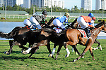 Scenes from around the track on  Gulfstream Park Derby Day on January 1, 2012 at Gulfstream Park in Hallandale Beach, Florida.  (Bob Mayberger/Eclipse Sportswire)