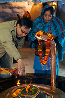 India, Dehradun.   Worshipers Pouring a Libation of Water over a Lingam Guarded by Sheshnag, the Divine Five-headed Serpent in Hindu Mythology, at Tapkeshwar Hindu Temple.  The lingam represents Shiva, symbol of the energy and potentiality of God.