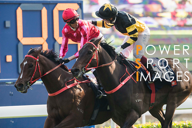 Jockey Nash Rawiller riding Mr Stunning #1 is congratulated by Jockey Olivier Doleuze riding D B Pin after winning the Longines Hong Kong Sprint (G1, 1200m) during the Longines Hong Kong International Races at Sha Tin Racecourse on December 10 2017, in Hong Kong, Hong Kong. Photo by Victor Fraile / Power Sport Images