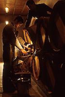 Europe/France/Aquitaine/33/Gironde/Pomerol: château Petrus - soutirage [Non destiné à un usage publicitaire - Not intended for an advertising use] [Non destiné à un usage publicitaire - Not intended for an advertising use]