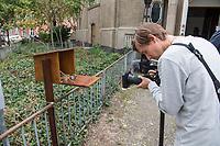 Eroeffnung der ersten Stempelstation fuer den Jakobsweg in Berlin an der Koenigin-Luise-Gedaechtniskirche in Berlin Schoeneberg.<br /> Zur Eroeffnung kamen neben etlichen Pilgern aus Deutschland auch die Berliner Imamin Seran Ates.<br /> Im Bild: Ein Kameramann filmt den Kasten mit dem Stempel, der fuer die Pilger vor der Kirche aufgestellt ist.<br /> 24.8.2020, Berlin<br /> Copyright: Christian-Ditsch.de<br /> NUR FUER REDAKTIONELLE ZWECKE! Werbung nur auf Anfrage beim Fotografen. [Inhaltsveraendernde Manipulation des Fotos nur nach ausdruecklicher Genehmigung des Fotografen. Vereinbarungen ueber Abtretung von Persoenlichkeitsrechten/Model Release der abgebildeten Person/Personen liegen nicht vor. NO MODEL RELEASE! Don't publish without copyright Christian-Ditsch.de, Veroeffentlichung nur mit Fotografennennung, sowie gegen Honorar, MwSt. und Beleg. Konto: I N G - D i B a, IBAN DE58500105175400192269, BIC INGDDEFFXXX, Kontakt: post@christian-ditsch.de<br /> Bei der Bearbeitung der Dateiinformationen darf die Urheberkennzeichnung in den EXIF- und  IPTC-Daten nicht entfernt werden, diese sind in digitalen Medien nach §95c UrhG rechtlich geschuetzt. Der Urhebervermerk wird gemaess §13 UrhG verlangt.]