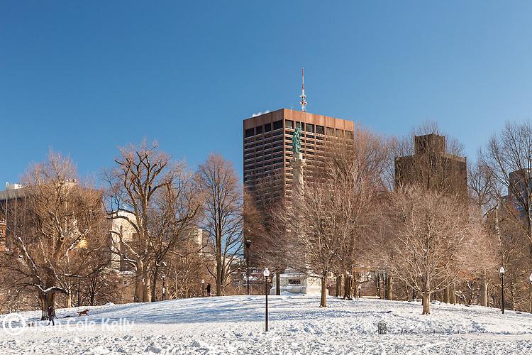 A fresh snowfall on Boston Common, Boston, Massachusetts, USA