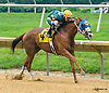 Ritzy Lass winning at Delaware Park on 7/30/16<br /> Ricardo Chiappe's 3rd win of the day!