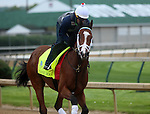 April 26, 2015 Kentucky Derby and Oaks workouts, Churchill Downs.  Danzig Moon, rider William Cano, owner John Oxley, trainer Mark Casse.  By Malibu Moon x Leaveminthedust (Danzig) ©Mary M. Meek/ESW/CSM