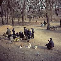 Chinese villagers gather to play chess games in their neighbourhood in Beijing, China in March, 2011. (Mamiya 6, 75mm f3.5, Kodak Ektar 100 film)