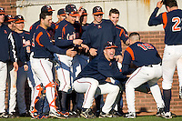 Steven Proscia #19 of the Virginia Cavaliers is congratulated by his teammates following his 2-run home run against the East Carolina Pirates at Clark-LeClair Stadium on February 19, 2010 in Greenville, North Carolina.   Photo by Brian Westerholt / Four Seam Images
