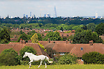 London skyline The Shard, Post Office Tower, housing urban horses.
