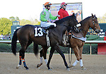 J W Blue, ridden by Joseph Rocco Jr., in the post parade before the grade 2 Rebel Stakes for three year olds on March 19, 2011 at Oaklawn Park in Hot Springs, Arkansas.  (Bob Mayberger/Eclipse Sportswire)