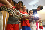 A group of kids hold Miss Piggy during a Wild Things presentation at the Carson City Library, in Carson City, Nev., on Wednesday, July 30, 2014.<br /> Photo by Cathleen Allison