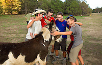 Photo story of Philmont Scout Ranch in Cimarron, New Mexico, taken during a Boy Scout Troop backpack trip in the summer of 2013. Photo is part of a comprehensive picture package which shows in-depth photography of a BSA Ventures crew on a trek.  In this photo BSA Venture Crew Scouts work to get their racing plan together during the nightly team burro racing at Harlan Camp  in the backcountry at Philmont Scout Ranch.   <br /> <br /> The  Photo by travel photograph: PatrickschneiderPhoto.com
