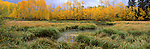 autumn, fall, wetland, Colorado