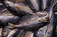 Asie/Malaisie/Bornéo/Sabah/Kota Kinabalu: Etal de poissons séchés sur le marché central