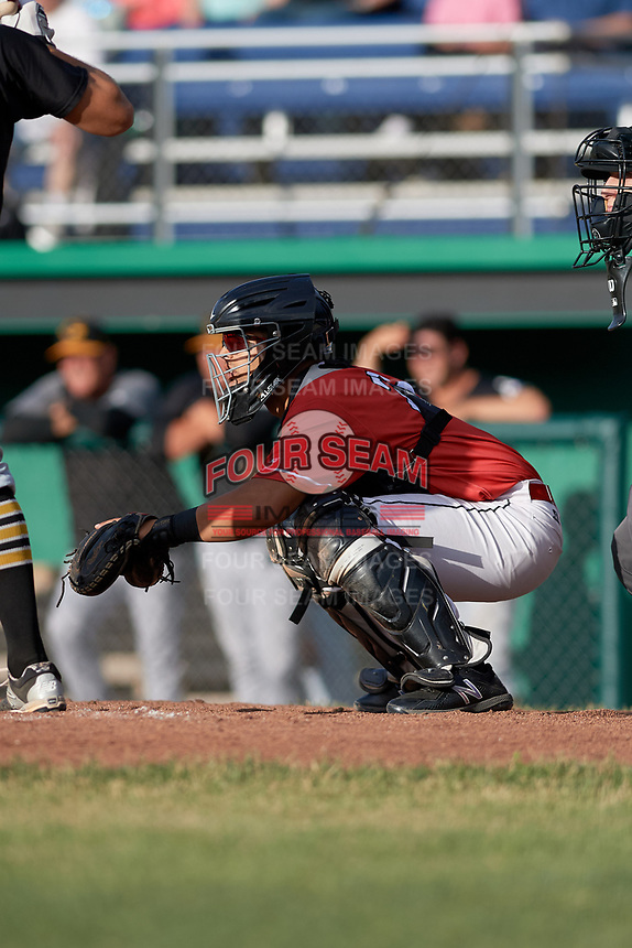 Batavia Muckdogs catcher Igor Baez (29) waits to receive a pitch during a game against the West Virginia Black Bears on June 19, 2018 at Dwyer Stadium in Batavia, New York.  West Virginia defeated Batavia 7-6.  (Mike Janes/Four Seam Images)